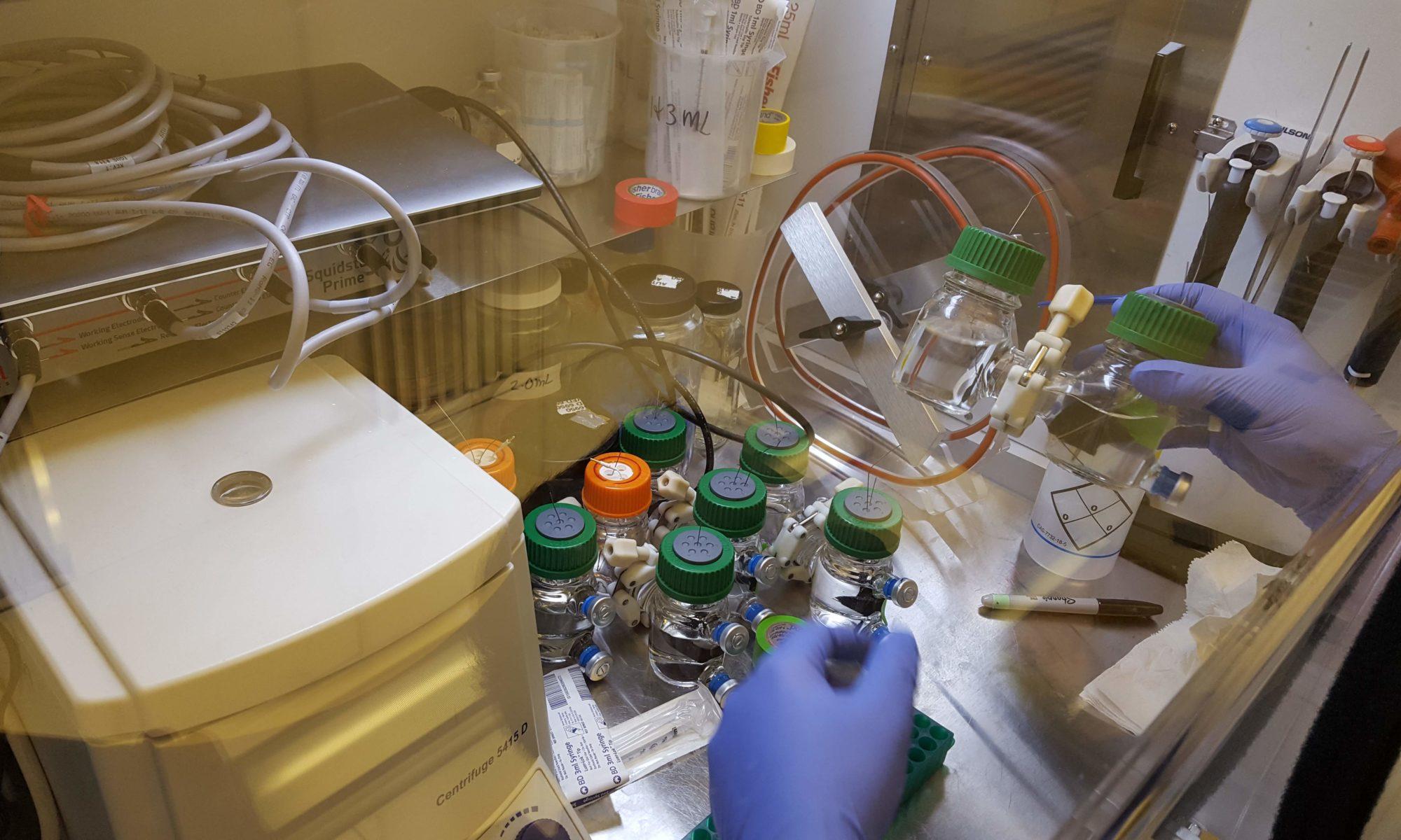 Rowe Lab
